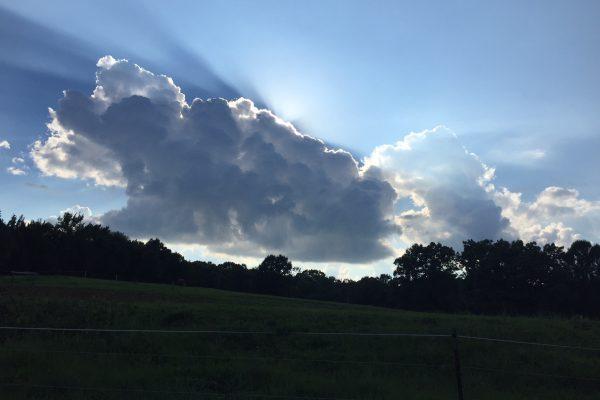 SRR Glory Sky