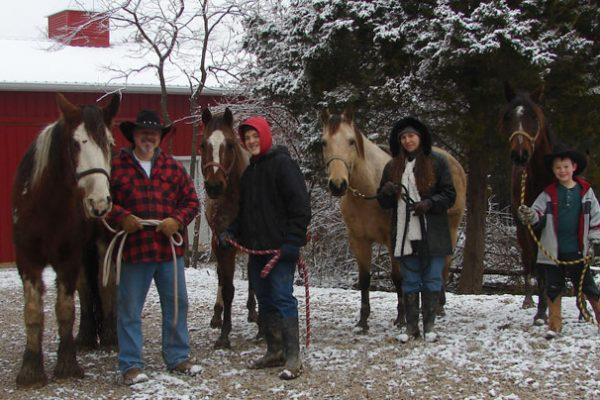 christmas_horses